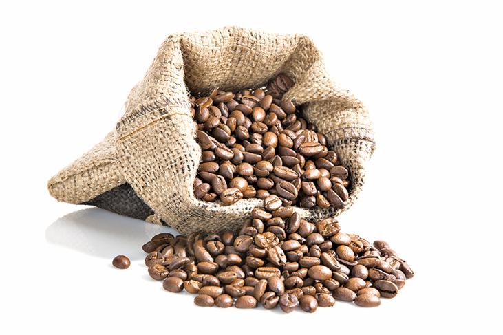 食物儲藏法 : 咖啡豆