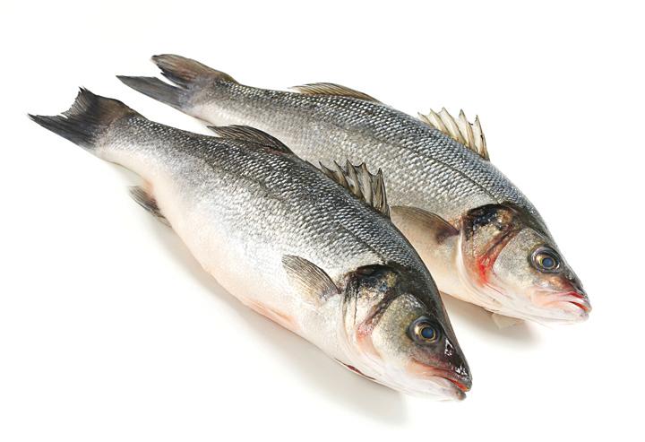 鱸魚(Fotolia)