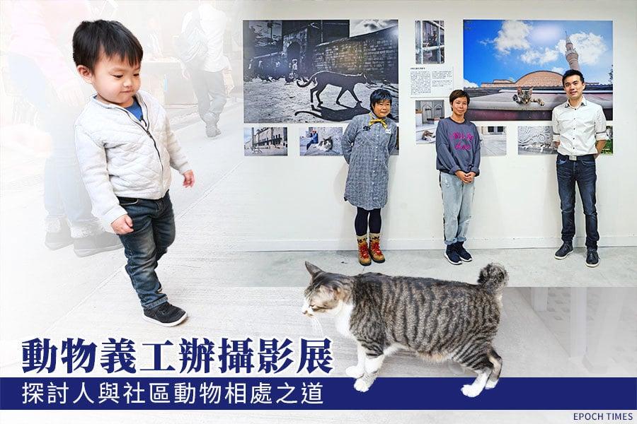 動物義工辦攝影展 探討人與社區動物相處之道