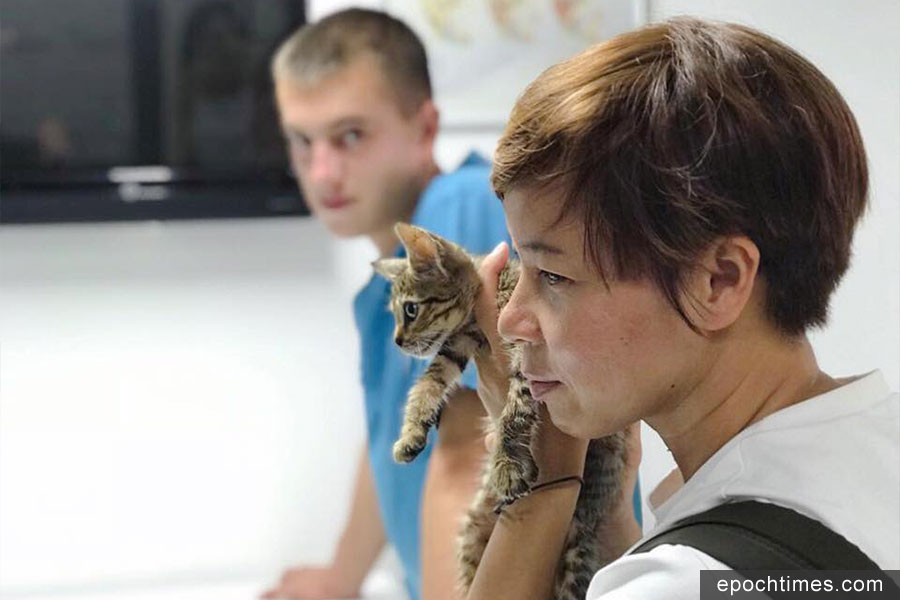 German在土耳其營救生病的貓咪。(受訪者提供)