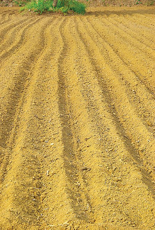 黃色,是古人對大地的印象。土地示意圖。(王嘉益/大紀元)