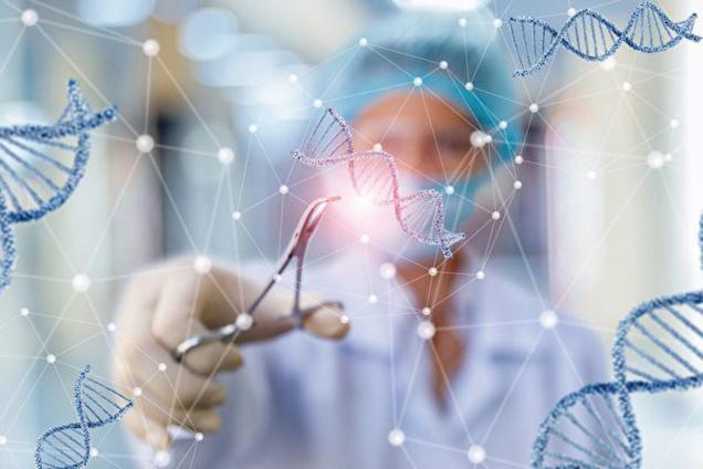 基因編輯在美國目前仍禁止,多位西方主流科學家對賀建奎做法提出質疑,有人認為這個嘗試很不安全,也有人譴責中國根本是在進行人體實驗。 (ShutterStock)