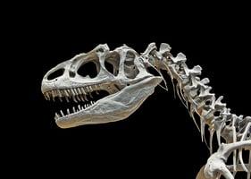 恐龍並非三疊紀唯一大型動物