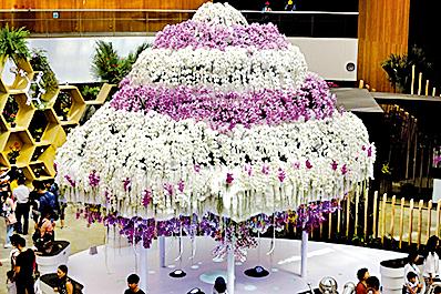 知識雲朵:后里花舞館中上千朵雪白蝴蝶蘭堆成的「知識雲朵」。