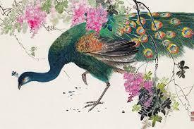 畫家 徐明義畫集6-孔雀(彩墨)。(徐明義提供)