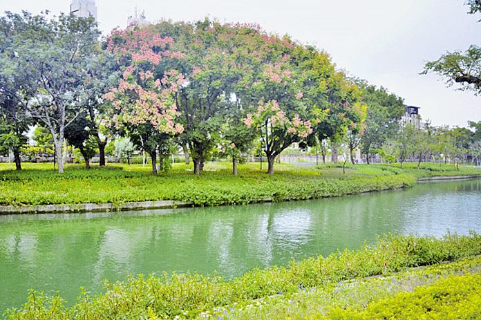 蜿蜒整個豐原的軟埤仔溪到豐原花博園區就是最美麗的所在。