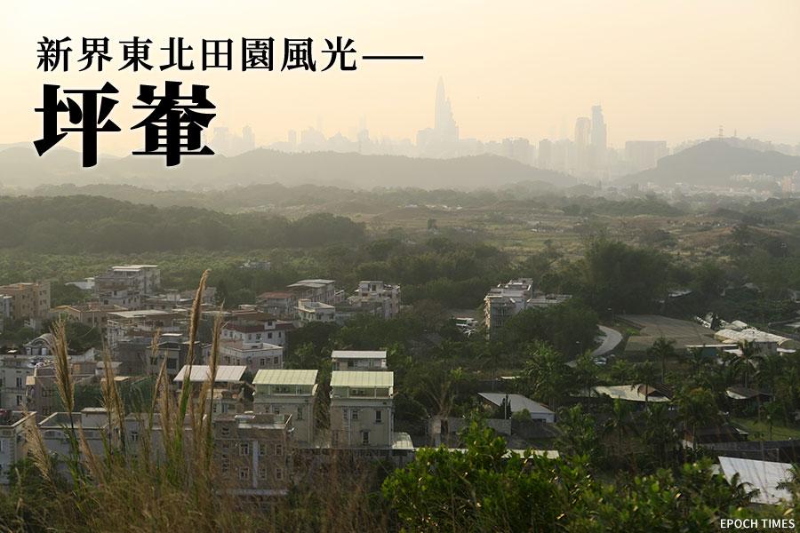 在坪洋村後小丘上,可一覽坪洋村與後方的深圳市區。(陳仲明/大紀元)