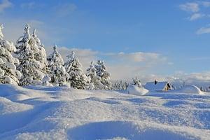 下雪時世界為甚麼如此安靜?