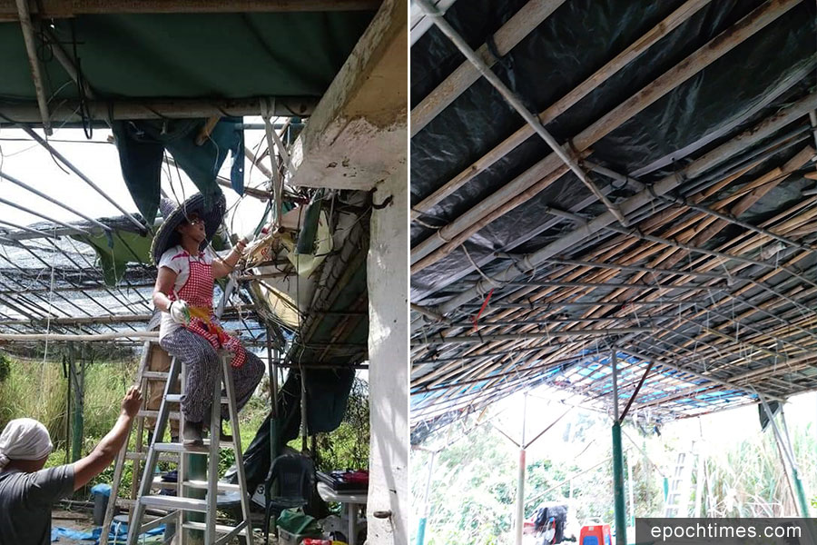「山竹」颱風吹走了帆布,坤記姊妹親自出馬換新帆布。(受訪者提供)