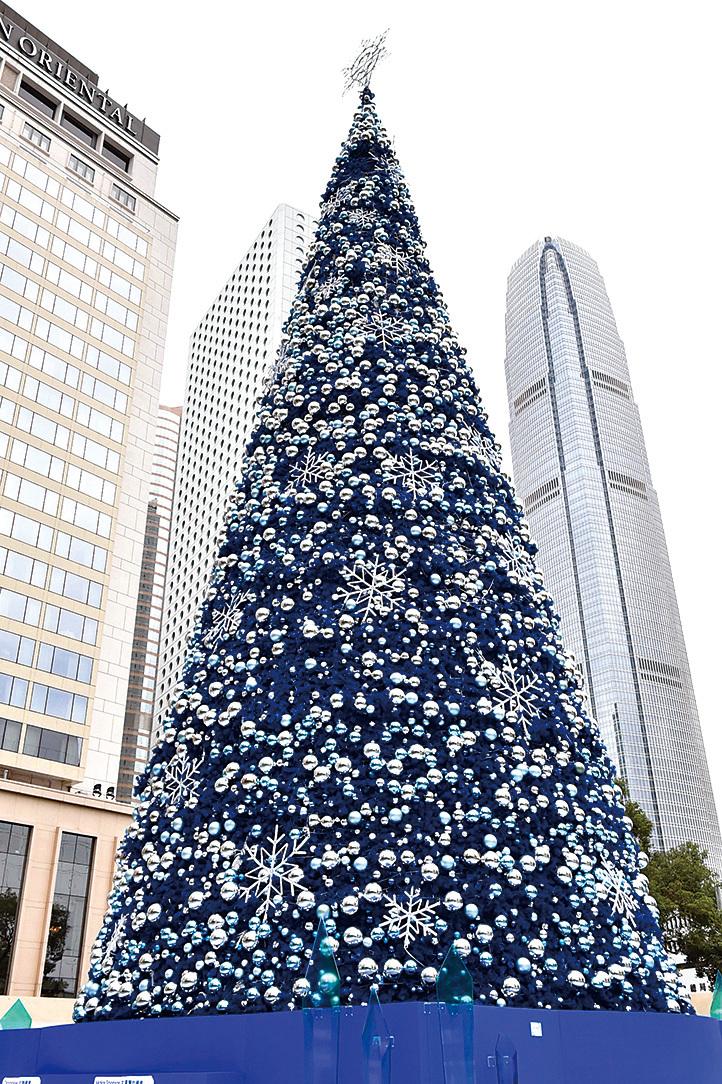 皇后像廣場 19 米高傳統聖誕樹。(郭威利/大紀元)