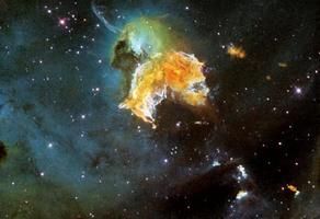 超新星導致史前巨齒鯊滅絕