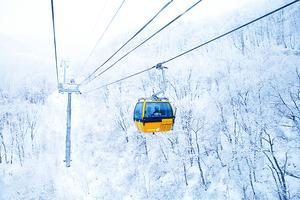 南韓冬季滑雪場完全征服手冊