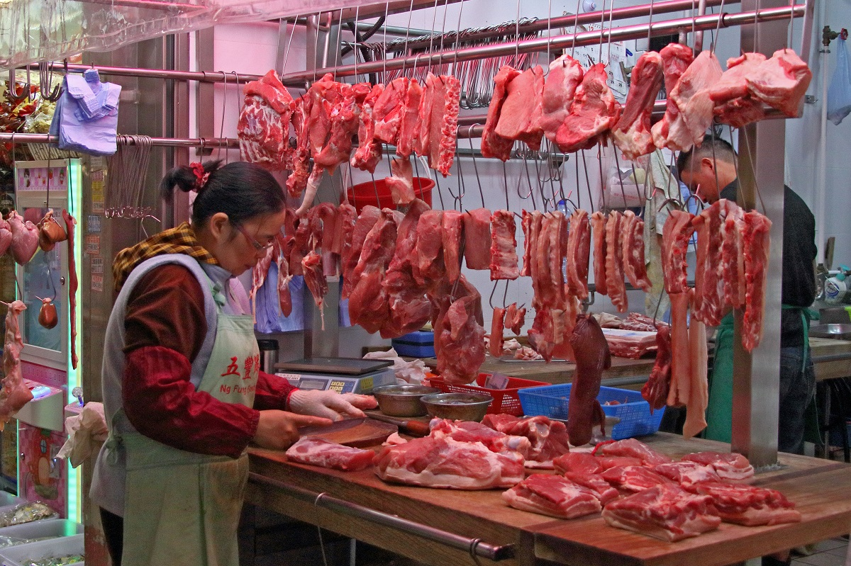 大陸非洲豬瘟疫情持續,漁護署加強監測包括本港野豬。(蔡雯文/大紀元)