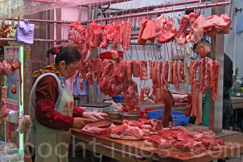 漁護署應變措施防非洲豬瘟 含監測野豬