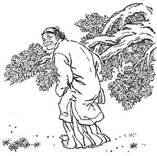 劉姥姥(圖片:flickr/禁書網)