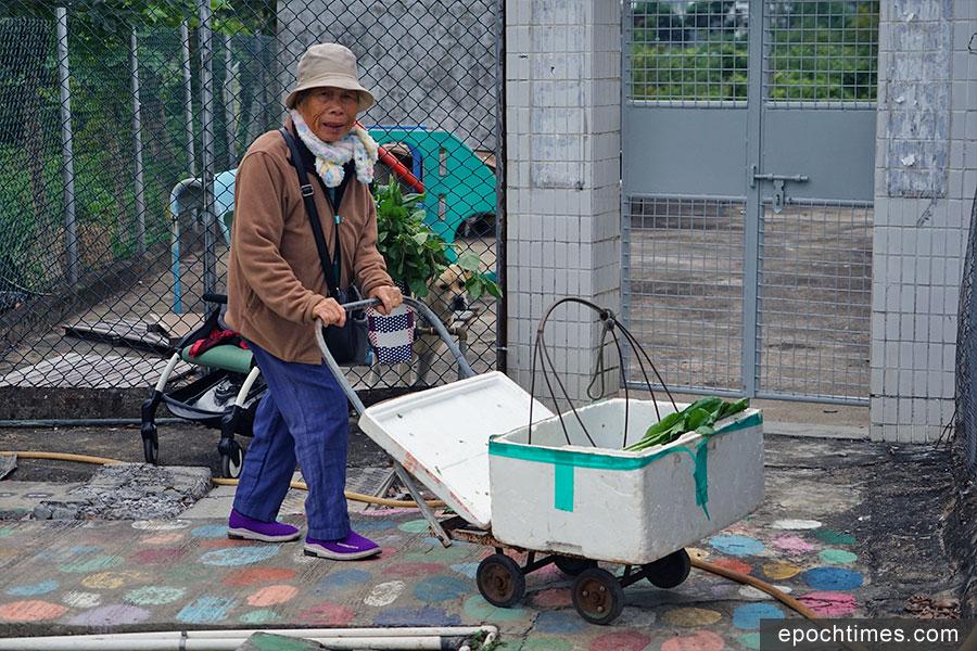 七十六歲的英姐推著賣菜的小車從市集回來。(陳仲明/大紀元)