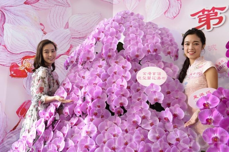 東港城將於本月19日至2月4日,舉辦第13屆室內年宵市場暨新春花展會,期間會展出全港首個逾2米高的巨型蘭花瀑布。(宋碧龍/大紀元)