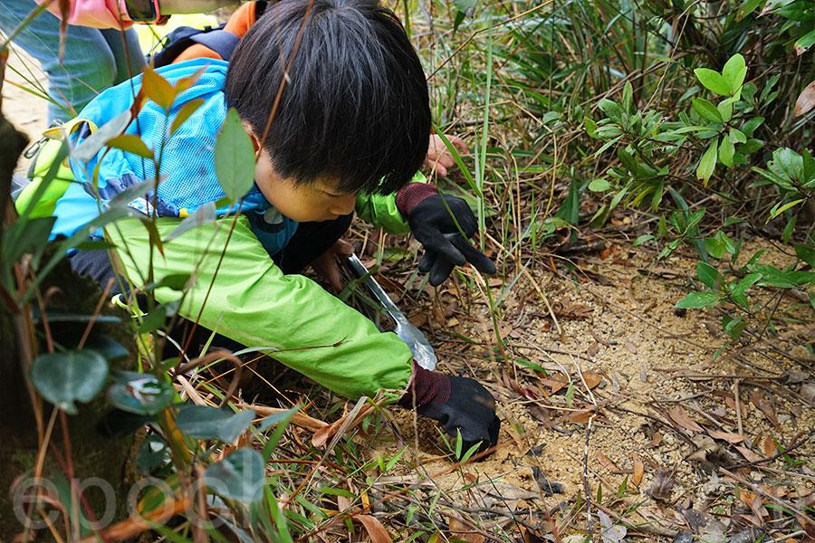 小朋友石振賢發現在執到的一個鋁罐中有一棵小綠苗。拔出綠苗後,將綠苗埋在土中。(曾蓮/大紀元)