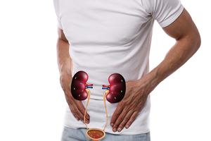 憋尿小心泌尿道感染