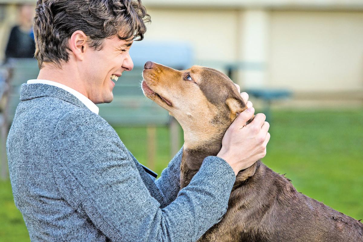 從魯卡斯收養流浪小狗貝拉起,彼此間的真摯友誼已很強烈。
