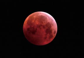 三大天文奇觀合一 超級血狼月登場