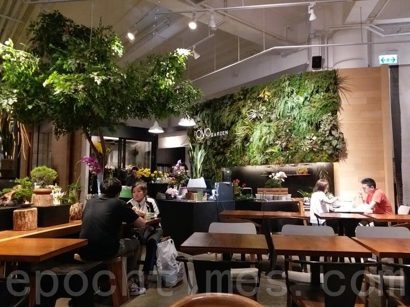 café周圍連樓梯都係放滿花草植物同盆栽,坐喺其中真係好似置身於花園中。