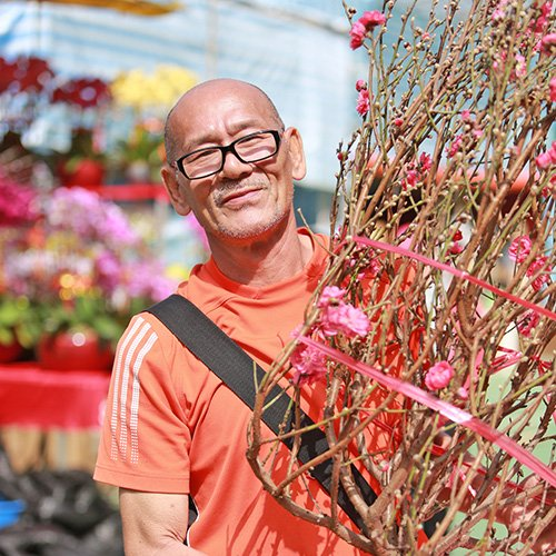 「山竹」及暖冬影響花期 桃花加價五成
