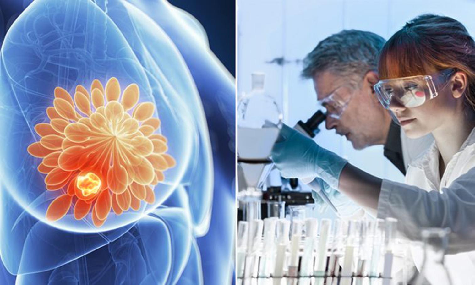 瑞士University of Basel的研究團隊發表了一項創新治療研究成果,利用癌細胞自身構成的漏洞,成功將乳腺癌細胞轉化為無害的脂肪細胞。(Illustration – Shutterstock)