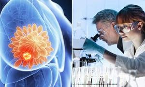 創新療法可將癌細胞變為脂肪細胞