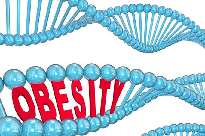 研究發現,吃不胖不是腸胃菌群的不同造成的,也不是不胖的人自律性一定特別好,而是有些人的基因天生有優勢,可以幫助他們一生保持不會胖。(SHUTTERSTOCK)