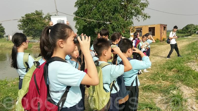 香港觀鳥會舉辦的導賞活動「探索魚塘生態及文化之旅」。(香港觀鳥會提供)