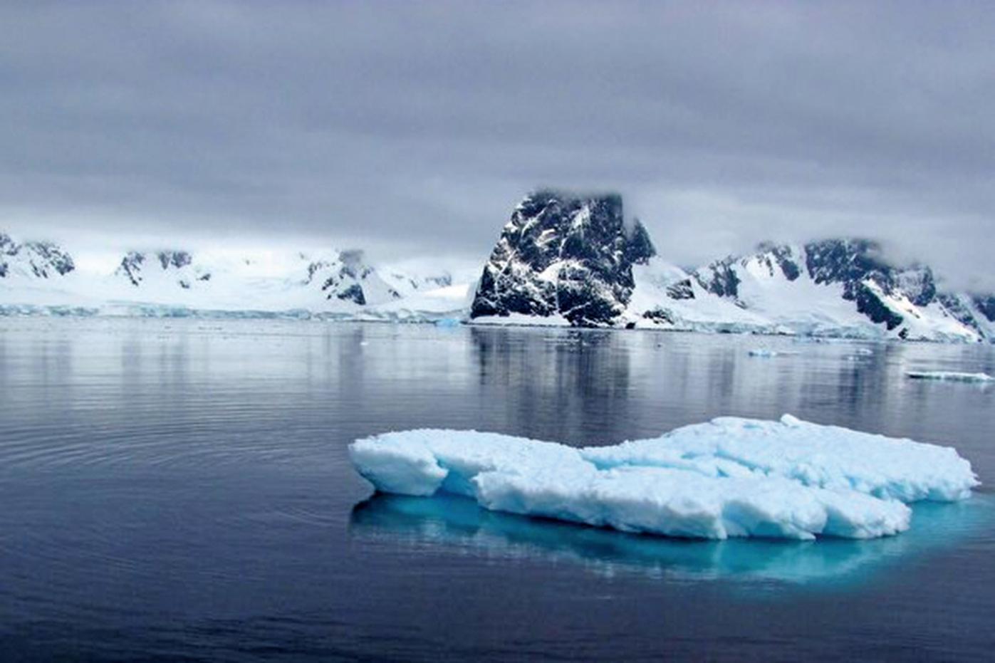 從斯瓦爾巴(Svalbard)Kongsfjorden地區提取的土壤樣本中,研究人員測到了2008年首次在印度發現的超級細菌blaNDM-1。(Creative Commons)