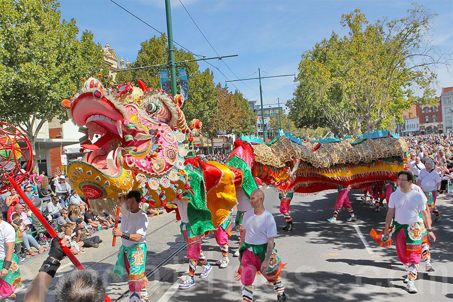 2016年3月27日,澳洲維多利亞州本迪戈市舉行的復活節慶典中,「新龍」參與大型舞龍表演。(陳明/大紀元)