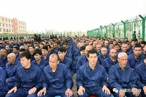 土耳其呼籲中國關閉新疆再教育營