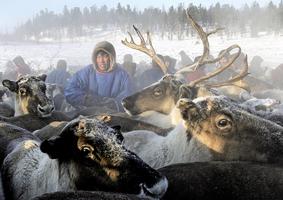 科學家發現動物冬天「釀酒」以抗寒