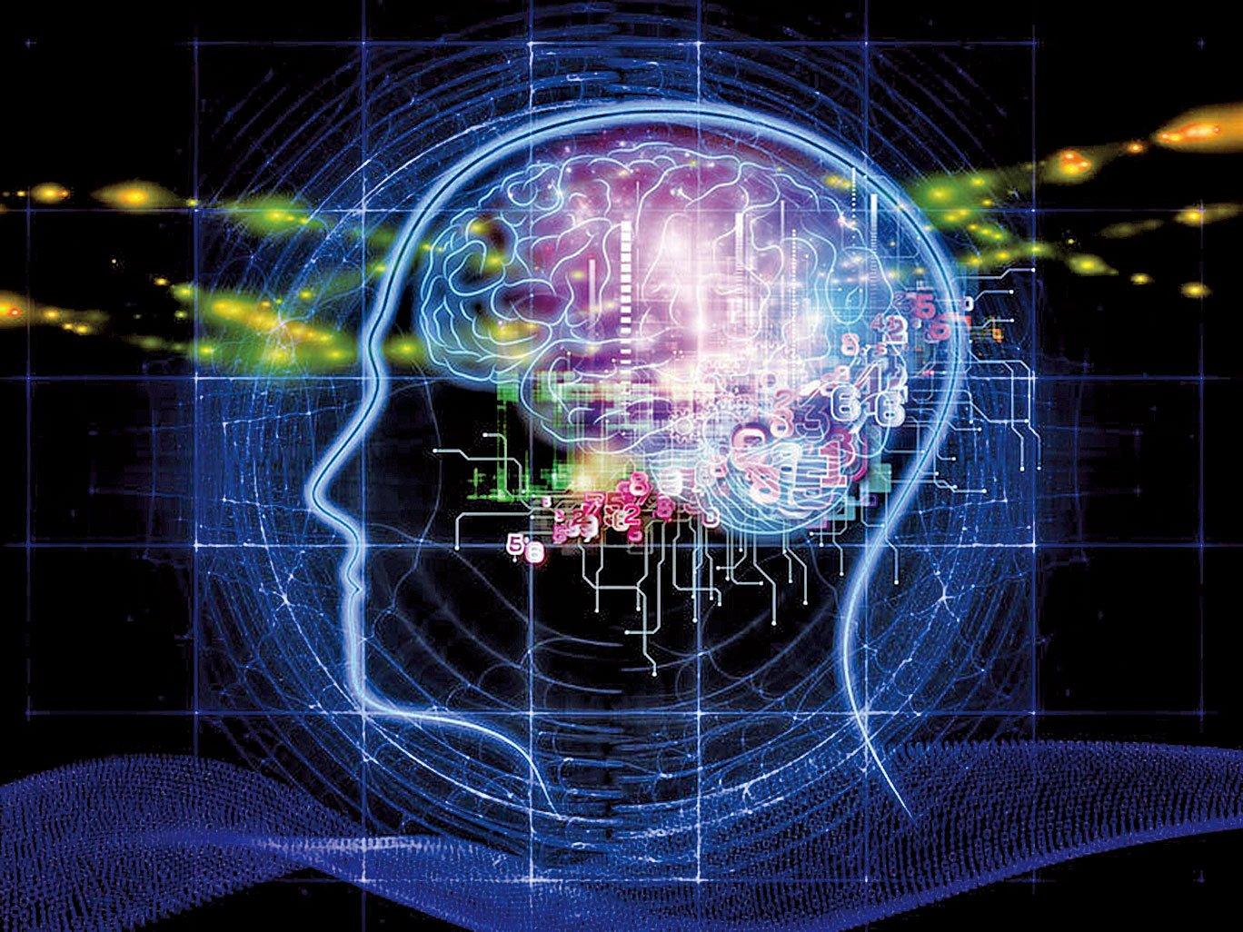 人腦的奧秘是無窮無盡的。但是,人腦只是肉體的一部份,人除了肉體,還有精神。(Flickr)