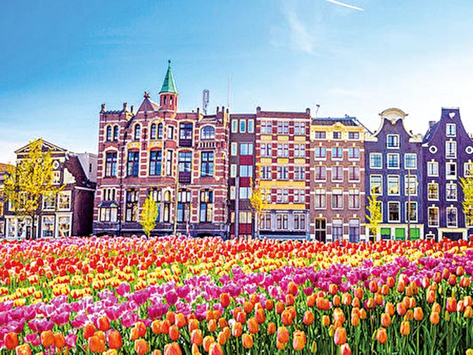 歐洲有「魔幻之花」、「花中皇后」之稱的鬱金香花季絢爛迷人。