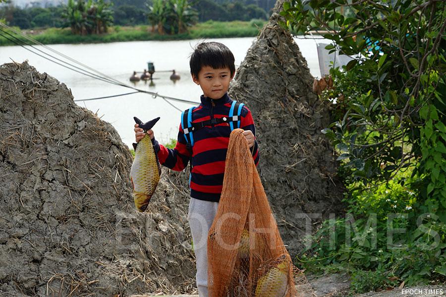 小朋友親身體驗漁民生活,學習割草及餵魚。(曾蓮/大紀元)