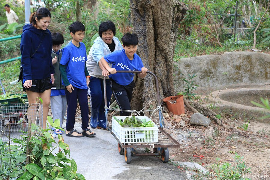 學生們運送剛剛從地裏拔起的蘿蔔到廚房。(陳仲明/大紀元)