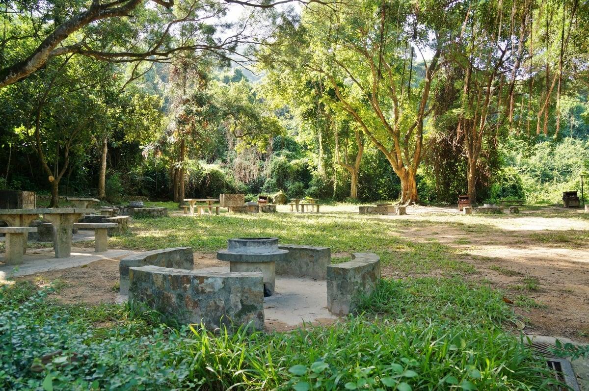 綠色力量與浸大最新一項調查發現,91%受訪者贊成香港需要保護郊野公園,但近一半受訪者對郊野公園的功能及價值只有「一般」認識。(綠色力量提供)