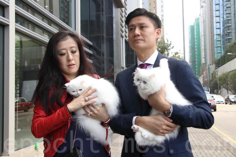 台失竊貓主向海關報案