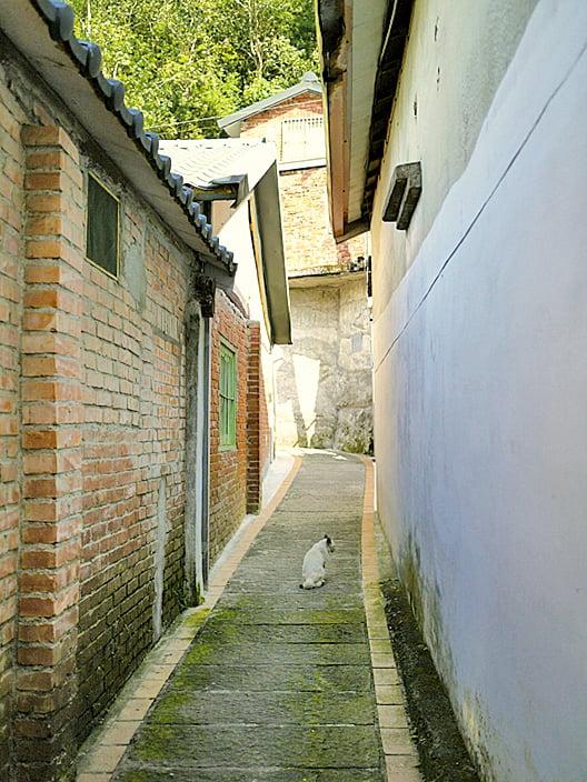 有別於喧嚷的桂花巷,位於上方的巷弄更顯幽靜。