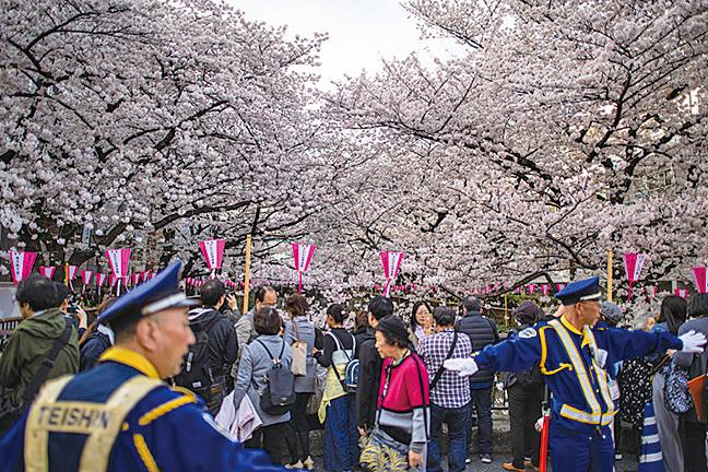 圖為,2018年3月26日,日本東京湧入賞櫻人潮。(Getty Images)