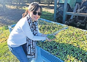 健康橄欖油做出好料理