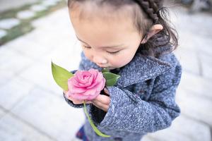 浮生行吟 看一朵花開落
