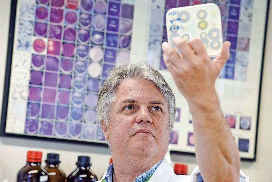 在超級細菌危機不斷惡化,抗生素領域仍未實現任何突破的情況下,用病毒對抗超級細菌,也許是目前研究者能夠想到的「最後一招」。圖為布魯塞爾大學的Pierard教授正在研究一個超級病菌的培養皿。(Getty Images)