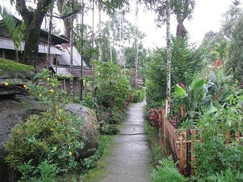印度傳奇小村莊全亞洲最乾淨