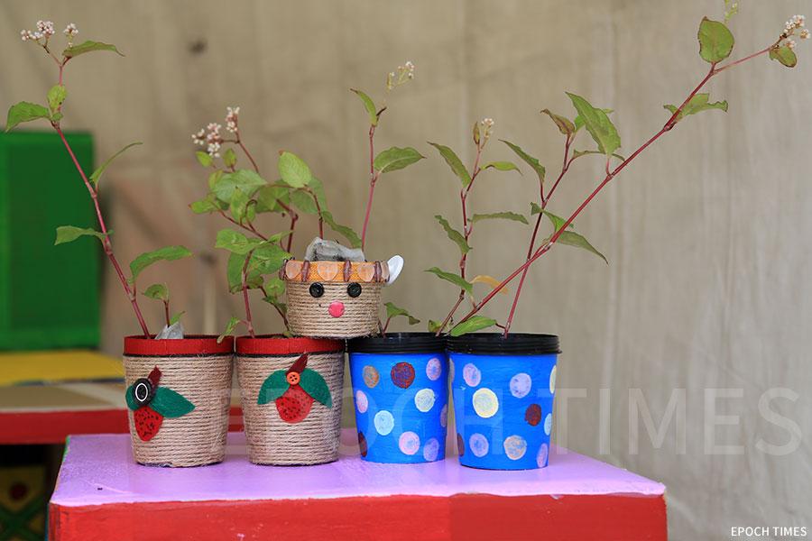只要帶來一個已清洗乾淨的膠樽,即可換購原生植物的苗和DIY花盆。(陳仲明/大紀元)
