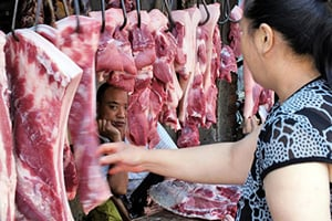 【圖片新聞】大陸豬瘟蔓延背後 豬肉恐再漲75%