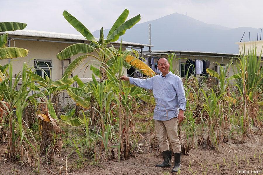 黃如榮從總經理轉型做農夫,一身裝扮依舊,只換上一雙水鞋。(陳仲明/大紀元)